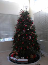 Our Christmas tree! by Zekrom734