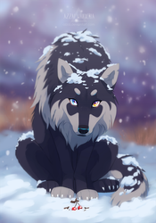 wolf's gift by azzai