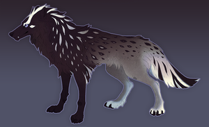 Wolf Adoptable 7 by QuillCoil