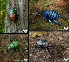 Realistic Gourd Sculpted Beetles 2 by ART-fromthe-HEART