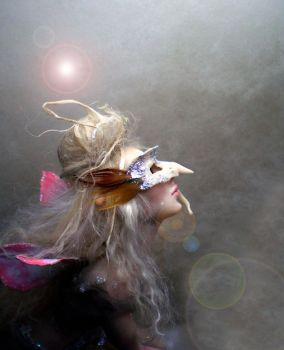 A Touch of Magic Fairy C by cdlitestudio