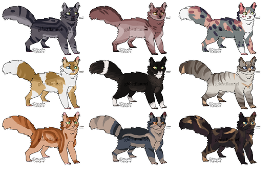 [8/9 open] cat adopts - Price Reduced! by ghostflannel