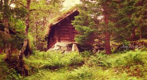 The Foresters Hut by ajnataya