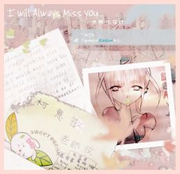 I Will Always Miss You by acacin