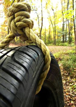 Tire Swing by NostalgicCompany