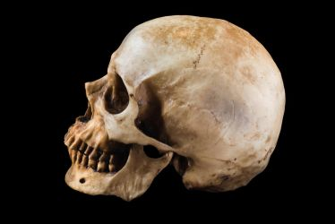 Terrible human skull isolated on black background by Black-Bl00d