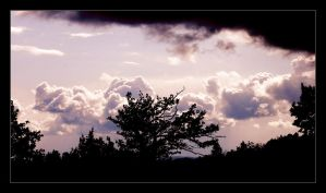 Clouds and... Trees by typhlosion