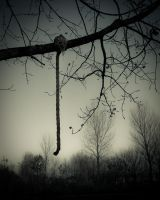 The hanging by DannyRoozen