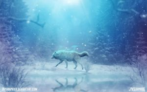 The Lone Southern Wolf by JayGraphixx