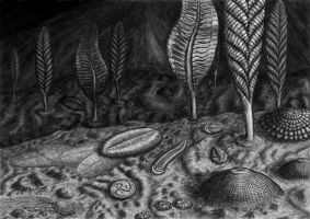 The Ediacaran biota by Typothorax