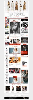 Magazine website design by netpal