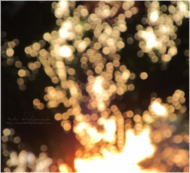 Sunset Bokeh 1 by NelEilis