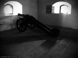 Cannon in the Lubart castle(Lutsk) by ArthurGautama