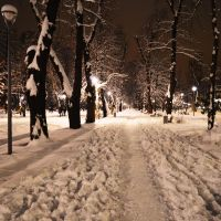 Snowy park at night by Cayasha