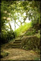Steps by omegach