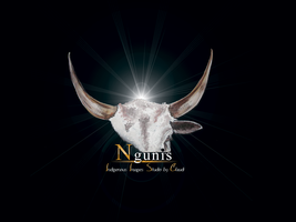 Nguni Stdios by Claudi by mct2art