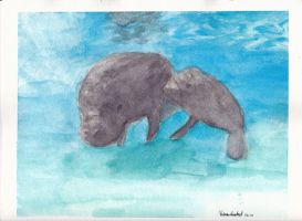 Manatees by liltrix7