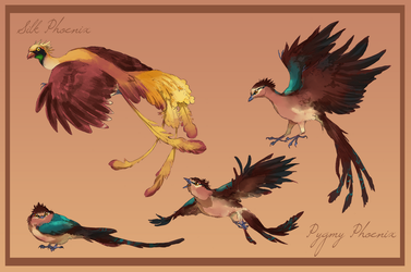 Phoenixes by Toradh