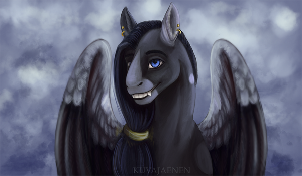 In the clouds by Kuvajaenen