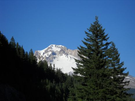 Mt. Hood by pancakes0fredemption