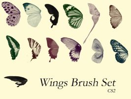 Butter Wings Brush Set by DeviantNep