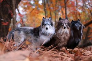 Room Guardian Wolf Pack by AnyaBoz