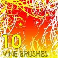 Vine Brushes by macys