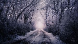 Winter VII (Uncropped) by MoonKey19
