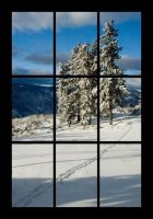 Window into My World by NaujTheDragonfly