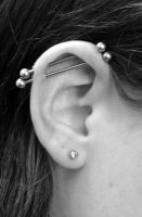 Double Industrial Piercing by buzz-n-sara