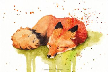 Nap by ChristinaMandy