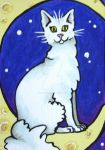 Cat on the moon by LotusElysse