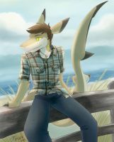 Boardwalk by Robo-Shark