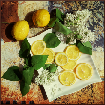 White lilac and lemons 1 by AnnaZLove