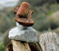 Driftwood And Rock Sculpture by wolfwings1