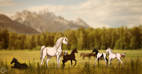 HotS   Foals full of personality by FeatherCandy