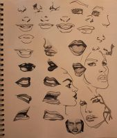 Nose and Mouth feature Study with Copic Sketch Gre by R1VENkassle