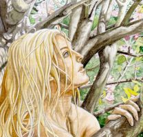 Nienor Awakens by peet
