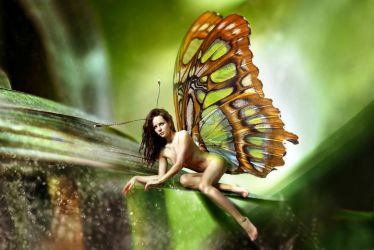 Spicy Butterfly by Jlior and NellyGrace David ver3 by FueledbypartII
