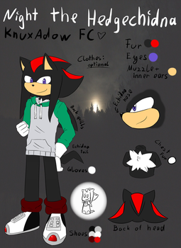 .:Ref:. Night the Hedgechidna by Fire-For-Battle