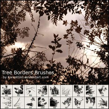 Tree Borders Brushes by ForestGirl