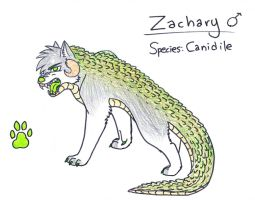 Zachary the Canidile by BlueMoonWolf101