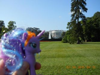 Luna at The White House #2 by Disneybrony
