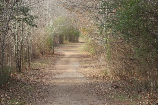 NATURE Greenway Farms path 1 by jimmylee1562