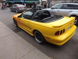 The Flaming Mustang In Kensington Market #5 by Neville6000