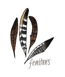 Juniperclan shop | Feathers by Daisynner