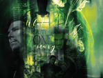 Reality Is One Of Many : Blend by Carllton