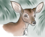 -Warm Up- Doe by Godspoison