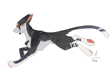starscream : cat version by AvaronCave