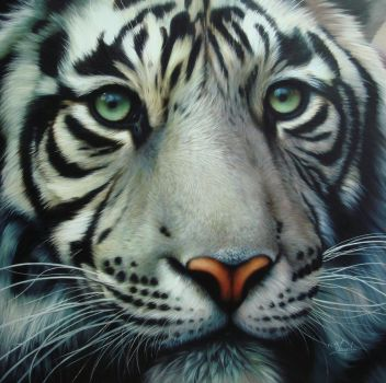 white tiger 2 by Raipun